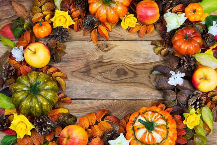 Border of pumpkins, apples, pine cones, fall leaves, yellow rose