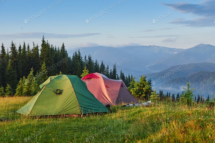 Tourist tents are in the green misty forest at the mountains
