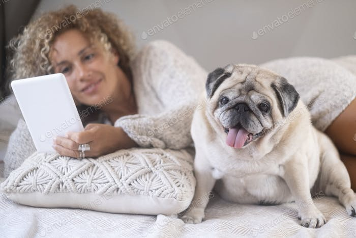 Young woman with her pet pug using digital tablet. Cute pet pug dog with female owner