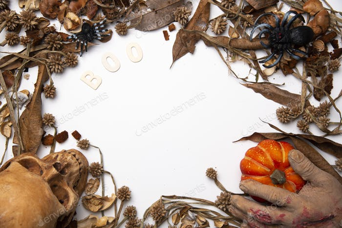 art background of Halloween with human skull