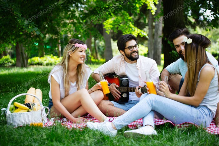 Glückliche Freunde im Park mit Picknick an einem sonnigen Tag
