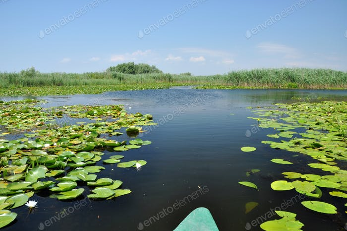 Beautiful lake in Danube delta, Romania