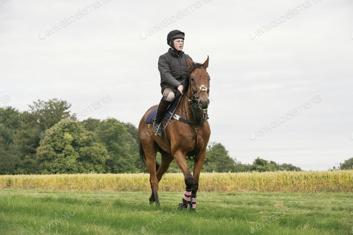 Man riding a bay thoroughbred horse across a field.