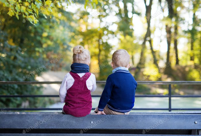 Rear view of twin toddler sibling boy and girl sitting in autumn forest
