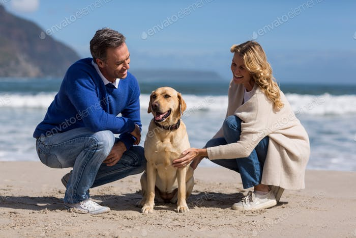Mature couple petting their dog