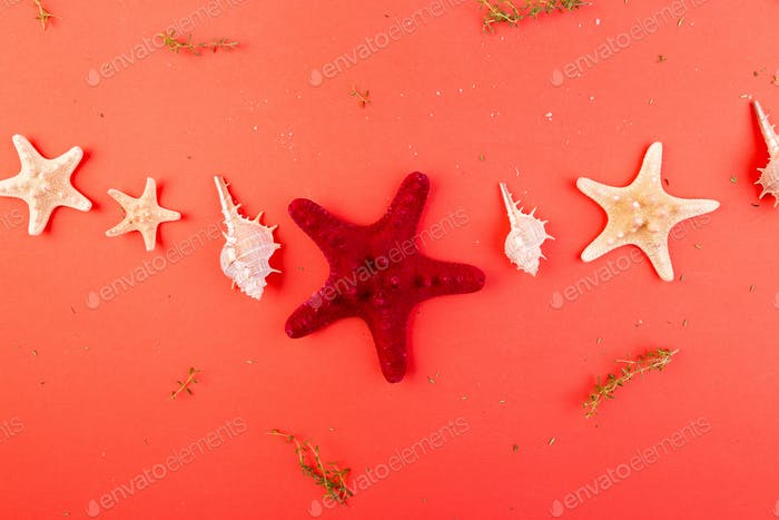 Red starfish background. Summer vacation concept. Flat lay.