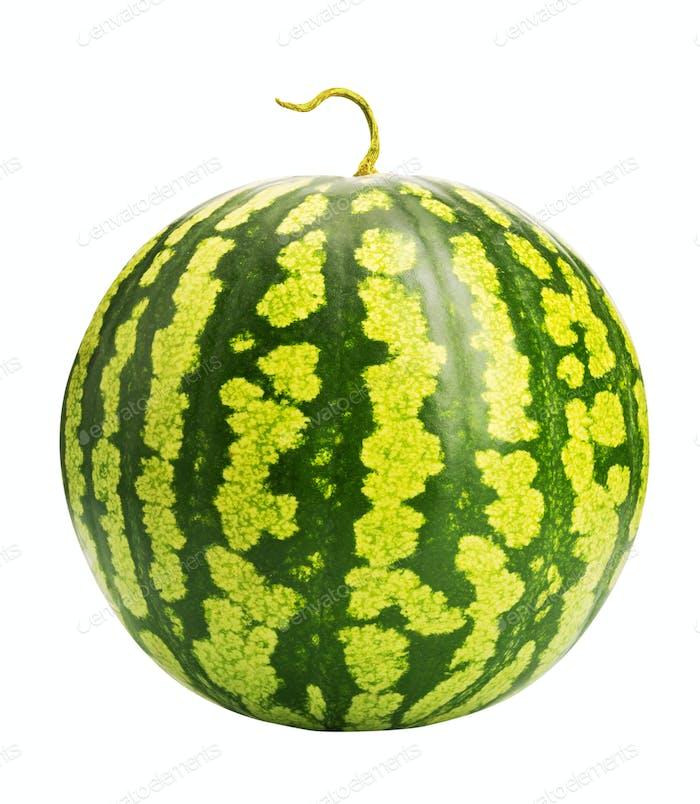 Frische reife Wassermelone