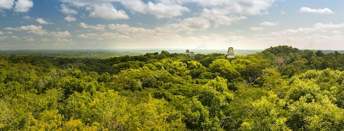 Tikal Guatemala Panorama