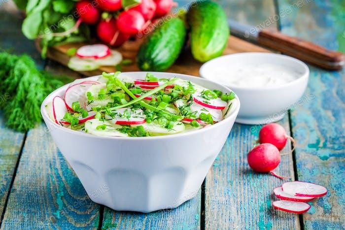 salad of fresh organic radish and cucumber in white bowl