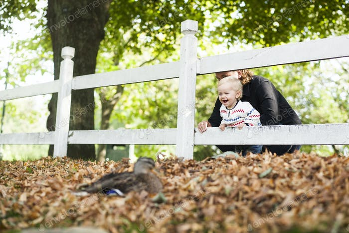 Happy baby girl with father looking at mallard duck in park