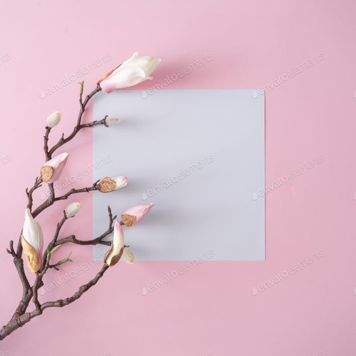 White and pink flowers on pastel pink background with paper card note. Minimal flat lay