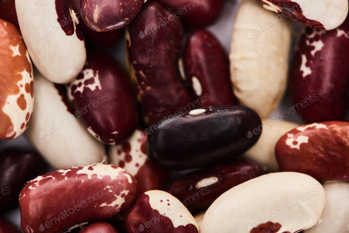 Close up View of Mix of Organic Beans