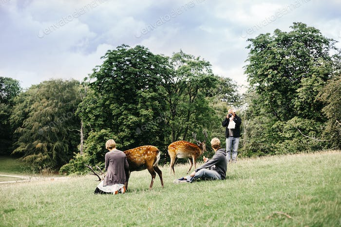 People with deer on grassy field
