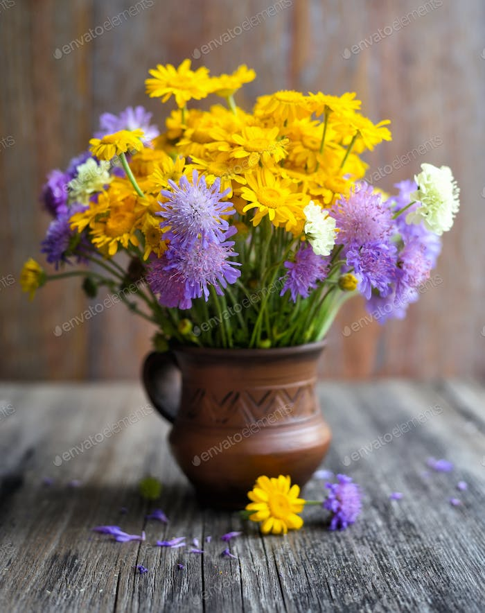 Bouquet of wildflowers (Anthemis tinctoria and Knautia arvensis)