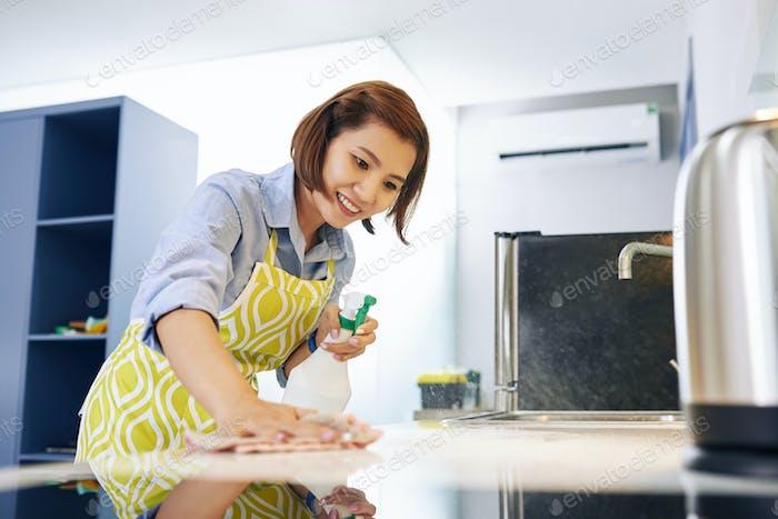 Reinigung Küchentheke