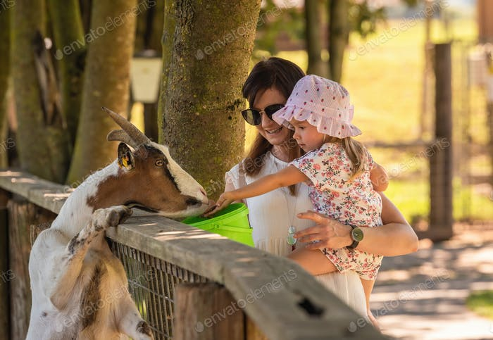 Happy child hold by mother feeding a goat in farm land