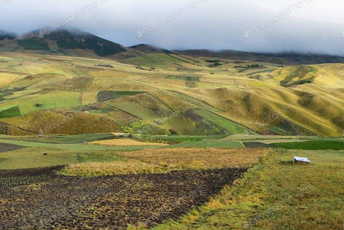 Blick auf die bunten Terrassenfelder