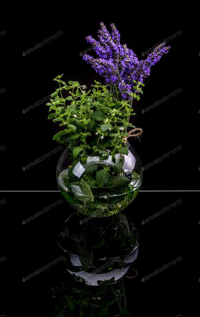 Lavendel und Zitronenmelisse