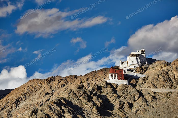 Namgyal Tsemo gompa and fort. Leh, Ladakh
