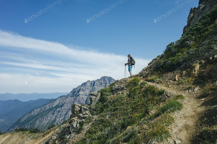 Male hiker pauses to take in view along the Pacific Crest Trail, Goat Rocks Wilderness, Gifford