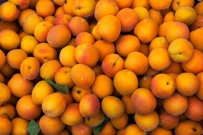 Healthy eating concept with fresh apricot
