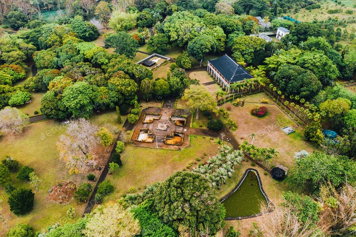 Botanical garden on the Paradise island of Mauritius. Mauritius island in the Indian ocean