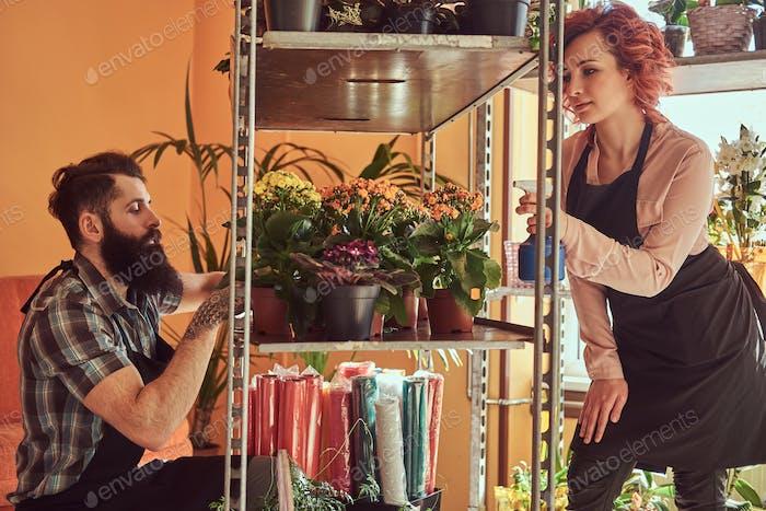 Dos floristas, hermosa pelirroja y hombre barbudo usando uniformes trabajando en floristería.