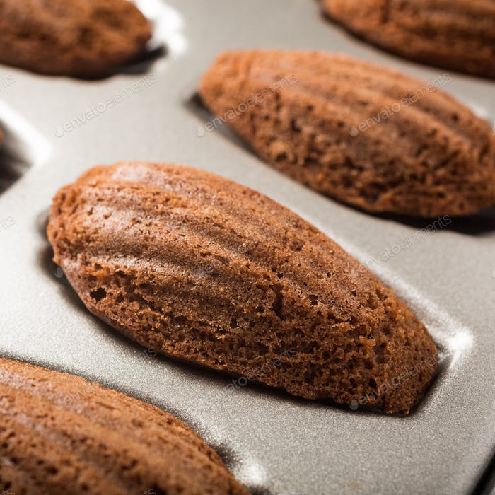 Chocolate madeleines cookies
