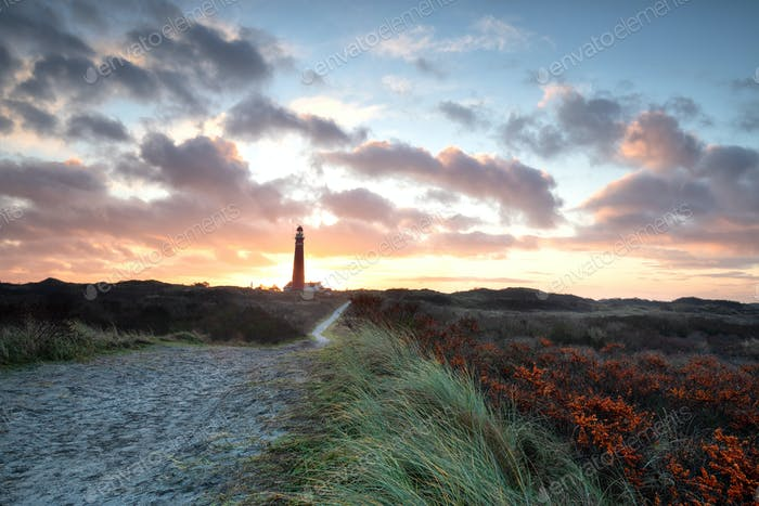 dramatic beautiful sunrise over lighthouse and sea buckthorns