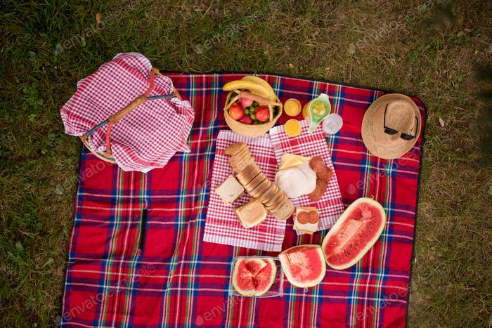 top view of picnic blanket setting on the grass