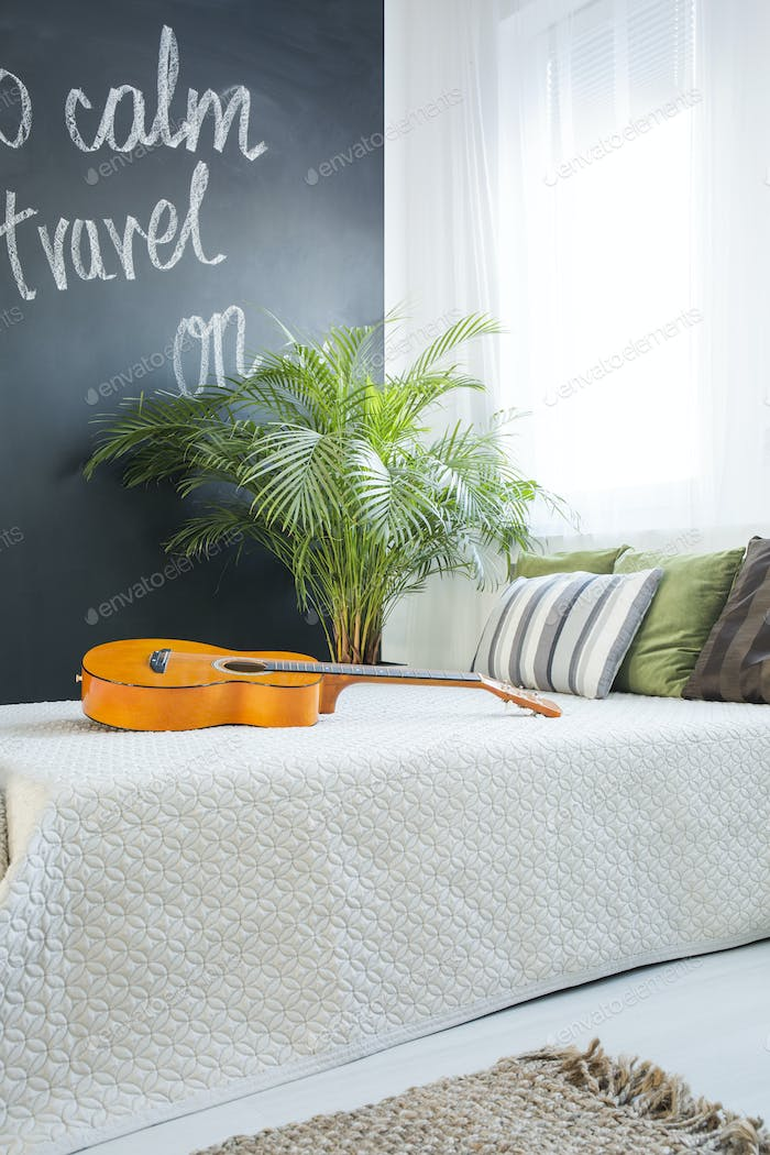 Guitar on a bed