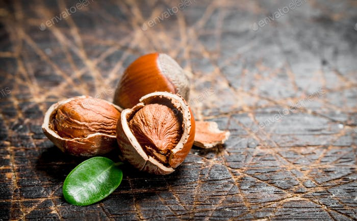 Hazelnut with green leaves .
