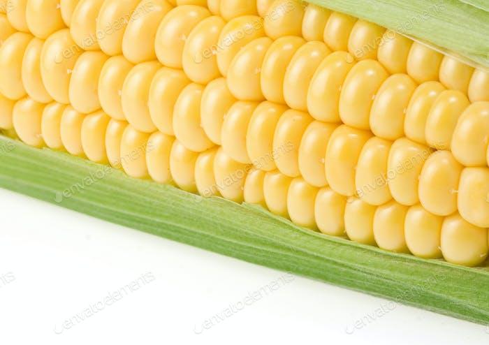 maíz amarillo maduro sobre blanco