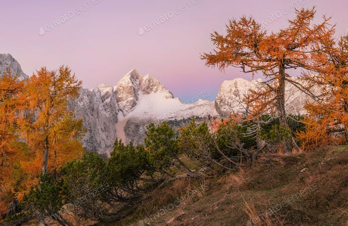 Autumn in the mountains landscape