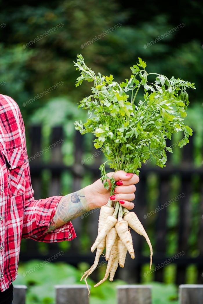 Tattooed millennials woman holding parsley in garden