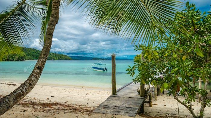 Hermosa Lagoone Azul con un Palmtree en frente, Isla Gam, West Papuan, Raja Ampat, Indonesia