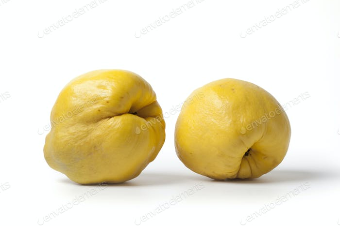 Two yellow quinces