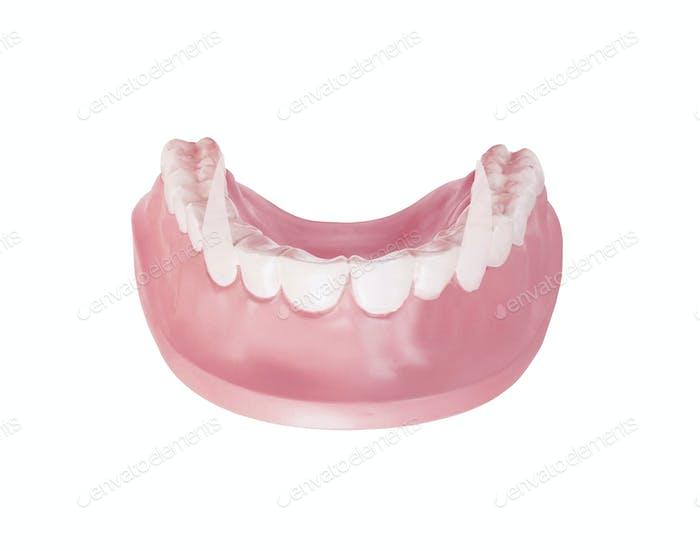 Vampire teeth isolated