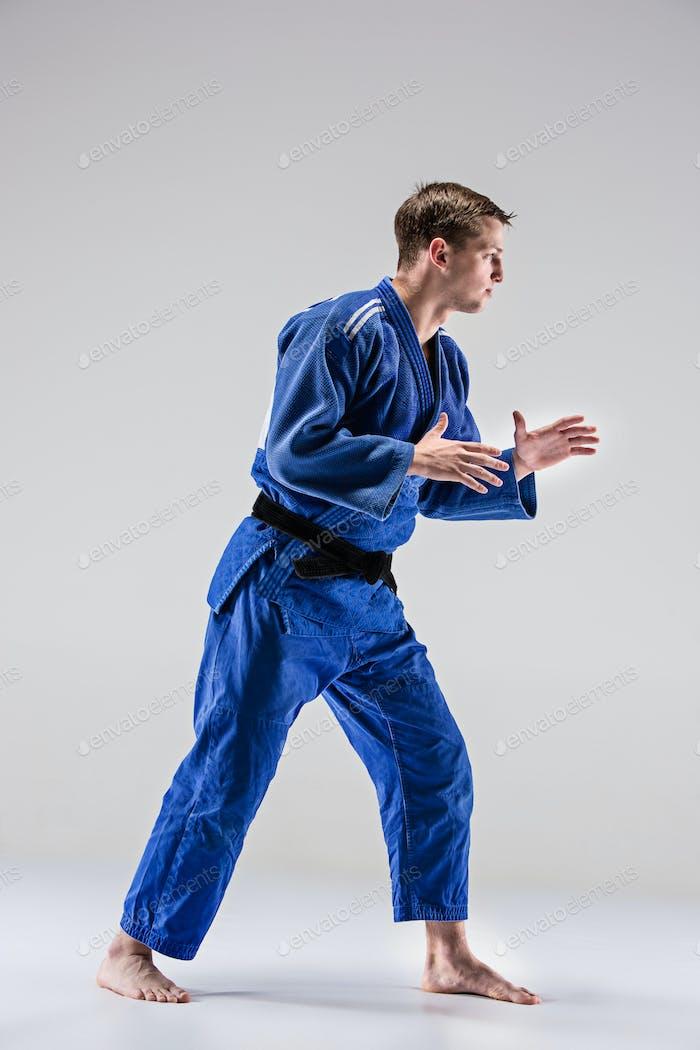 The one judokas fighter posing on gray