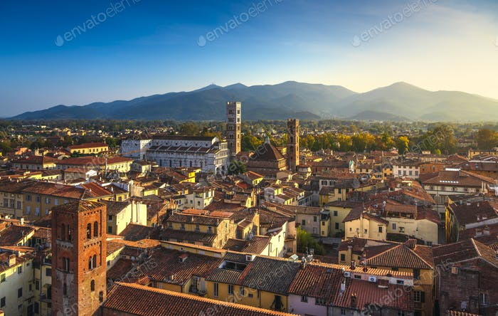 Lucca panoramic aerial view of city and San Martino Cathedral. Tuscany, Italy