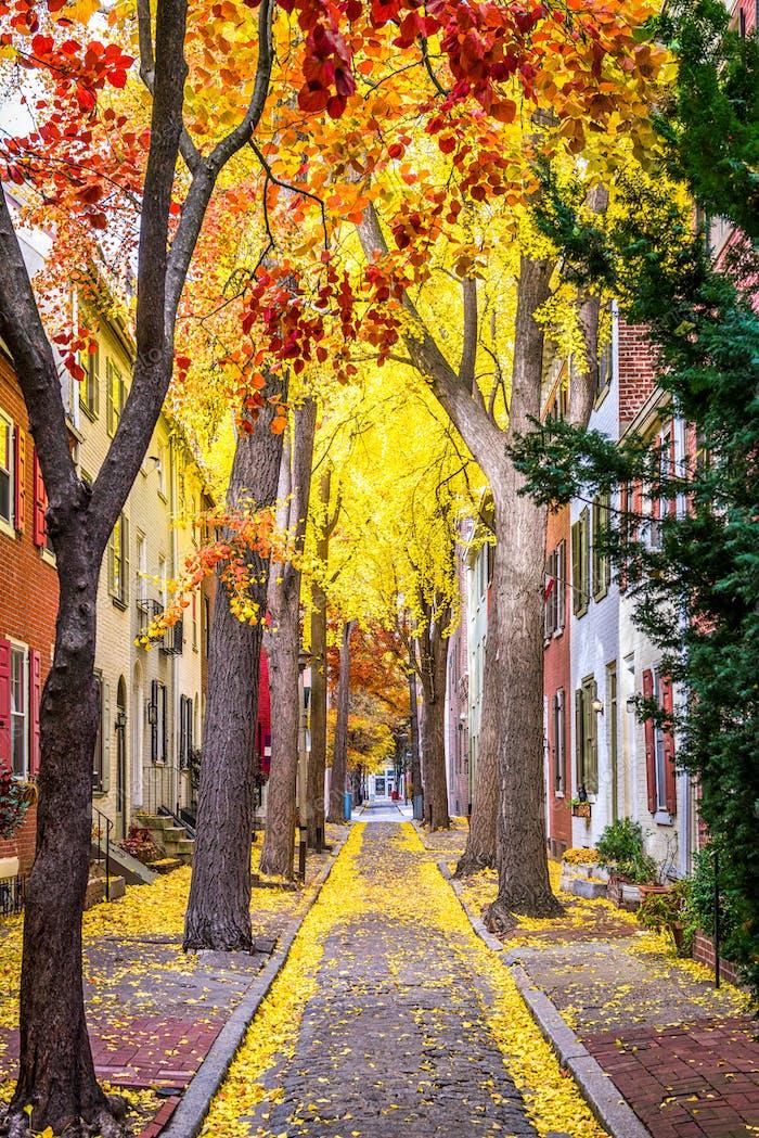 Philadelphia Autumn Streets
