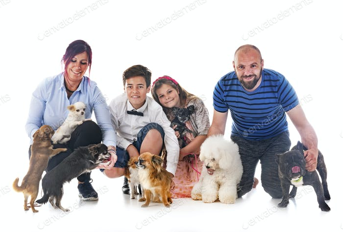 family and dogs