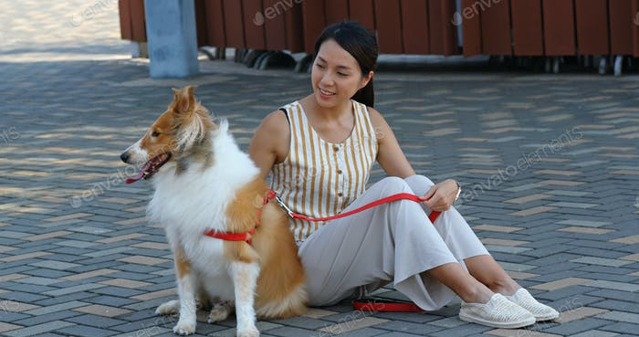 Woman pet owner with her herding dog at outdoor