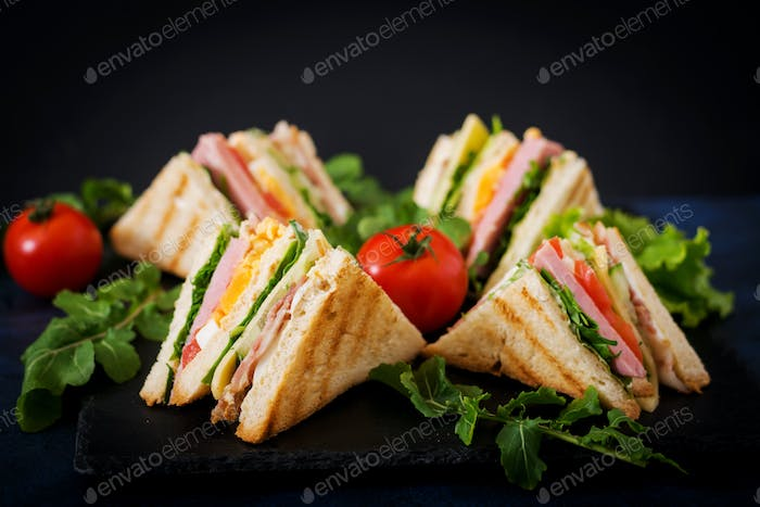 Club sandwich with ham, bacon, tomato, cucumber, cheese, eggs and herbs on dark background