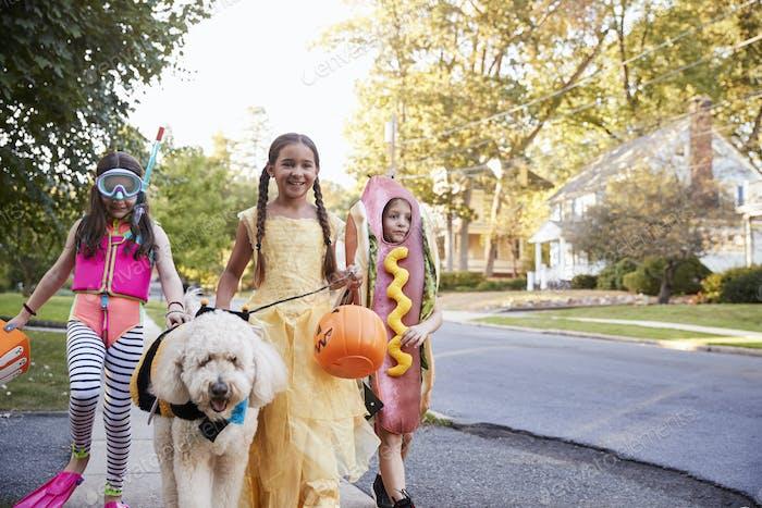 Kinder Und Hund In Halloween-Kostüme Für Trick Oder Behandlung