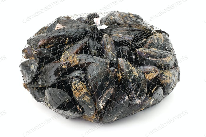 packaged mussels