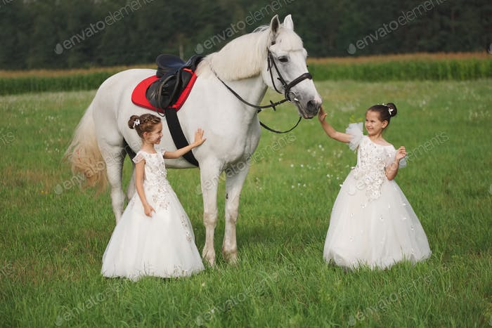 little princess with white horse in summer field