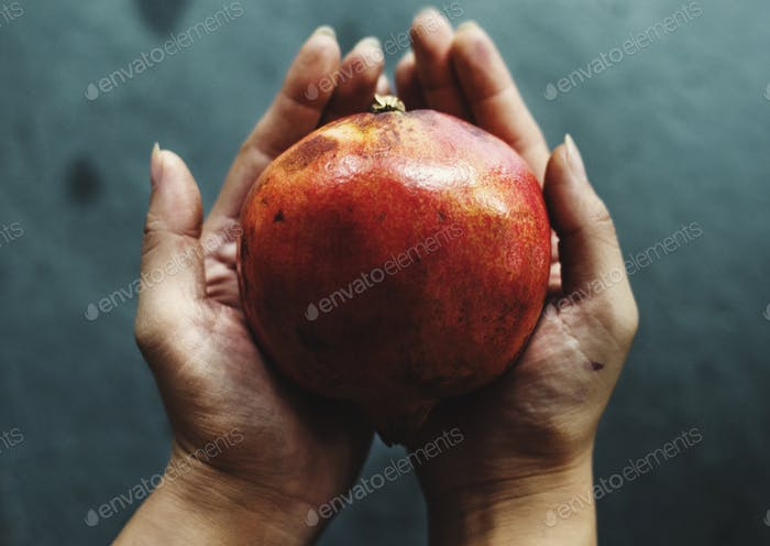 Hands holding pomegranate organic produce from farm