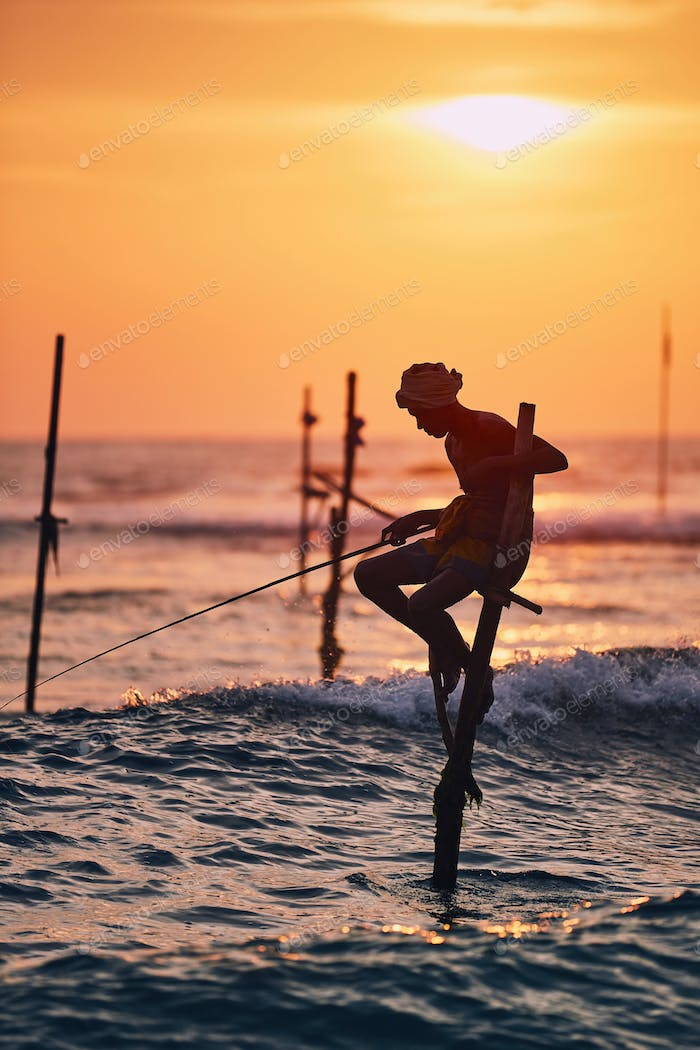 Traditional stilt fishing in Sri Lanka