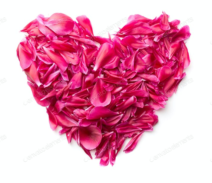 Heart made of peony petals.